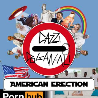 AMERICAN ERECTION