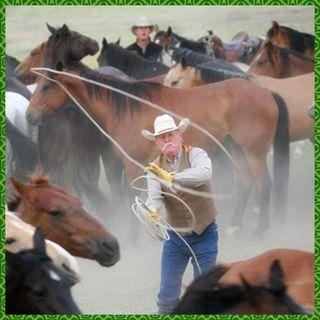 Craig Haythorn - from the legendary ranch in Nebraska that bears the family name