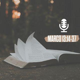 Episodio 2 - Il podcast di TransformWorkItaly - Speciale settimana Santa. MC 13:14-37