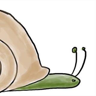 Comentarios. Un caparazón para caracol