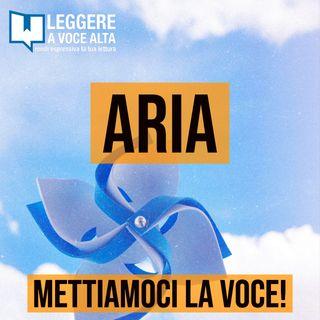 87 - ARIA - con Elena Bizzotto e Cristian Paganoni