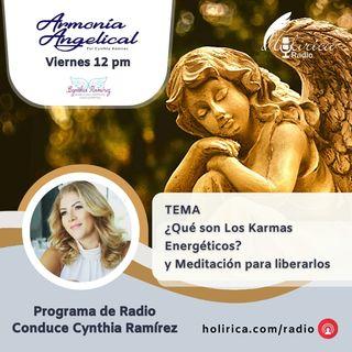 Armonía Angelical - Que son los Karmas