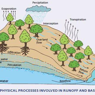 Revitalization of Rivers in India