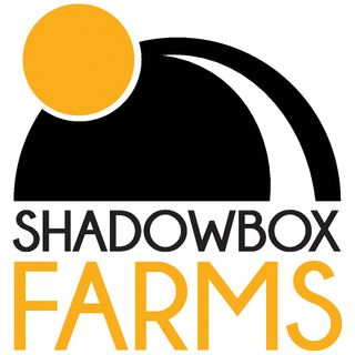 Shawdowbox Farms - Black Lime Reserve Vape