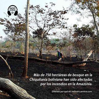Bolivia: los incendios en la Chiquitanía y sus causas