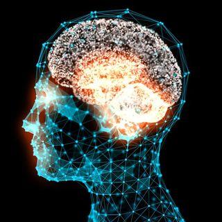#sanremo Types of intelligence