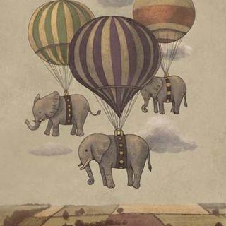 Sguardi InVersi - L'elefante in soggiorno