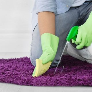 Best Area Rug Cleaning Services in Toronto.