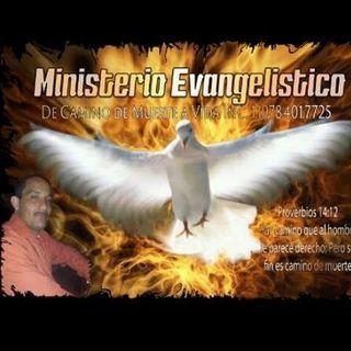 MINISTERIO MUERTEAVIDAINC.