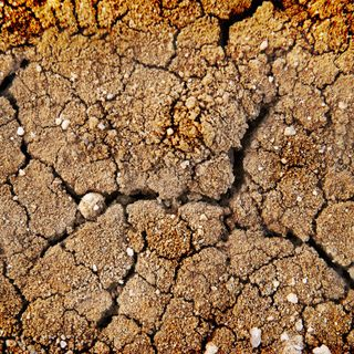 Holliness :The Cure For Spiritual Dryness (part 2)