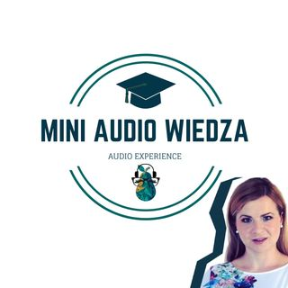 Mini-audio