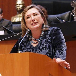 Xóchitl Gálvez denunció a Félix Salgado Macedonio ante la FGR por haber amenazado a los consejeros del INE