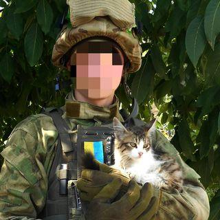 De svenska ukrainakrigarna