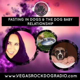 Fasting In Dogs and Understanding The Relationship Between Dogs and Babies