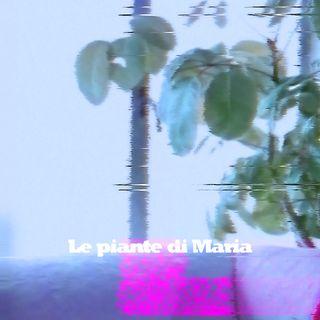 III. Le piante di Maria