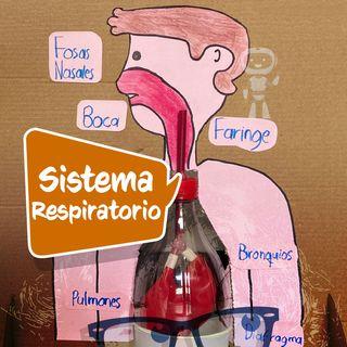¿Qué es el Sistema Respiratorio?