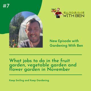 What jobs to do in the fruit garden, vegetable garden and flower garden in November