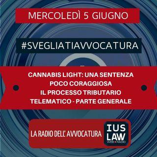 CANNABIS LIGHT: UNA SENTENZA POCO CORAGGIOSA – IL PROCESSO TRIBUTARIO TELEMATICO: PARTE GENERALE – #SvegliatiAvvocatura