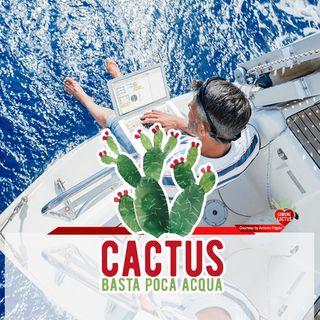 Cactus #20 - La rivincita del Sud - 11/02/2021