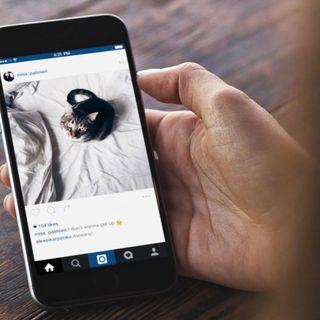 #mor News su Instagram e Twitter!