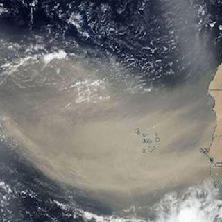 Polvo del Sahara llega a ocho estados