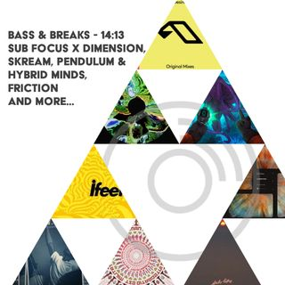 14:13 - Sub Focus x Dimension, Skream, Pendulum x Hybrid Minds, Friction and more...