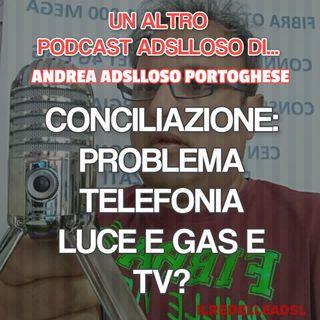 #10 Conciliazione Risoluzione Controversia TIM/Vodafone AGCOM Emilia Romagna Ep. #02