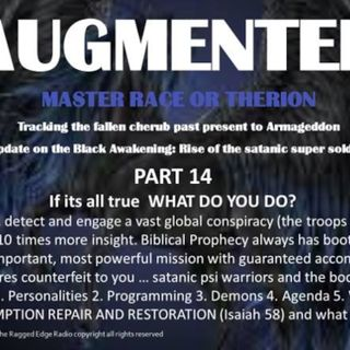 AUGMENTED PART 14 IF ITS ALL TRUE WHAT WILL YOU DO?