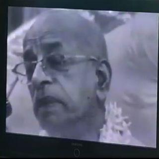 Ascolto dai video di Srila Prabhupada (19 luglio 2019)