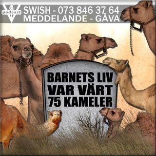 BARNETS LIV VAR VÄRT 75 KAMELER