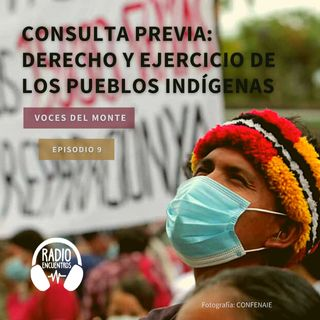 Consulta Previa: derecho y ejercicio de los Pueblos Indígenas