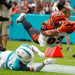 Cincinnati Bengals Weekly Show W/Joe Kelly: Bengals vs Dolphins Preview