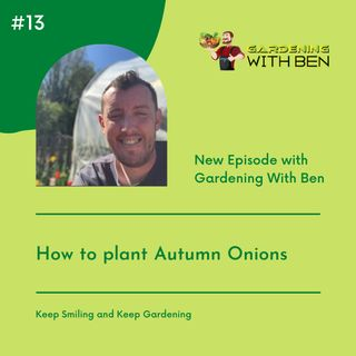 Episode 13:- How to plant Autumn Onions - Gardening Tips and Advice