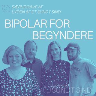18. Bipolar for begyndere /m. Forfatterne af bogen