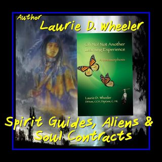 Laurie D Wheeler  Spirit Guides and ETs Oh No  Not Another Learning Experience