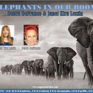 Elephants in Our Rooms~08/20/20~Janet Lessin, Debra DeFranco & Karen Patrick