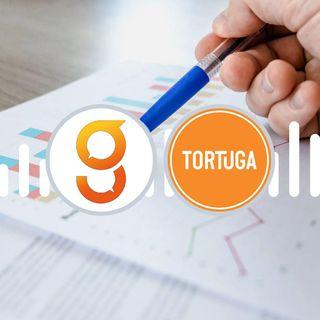 Tortuga Bay - Capitolo 2 (Il mercato del lavoro)