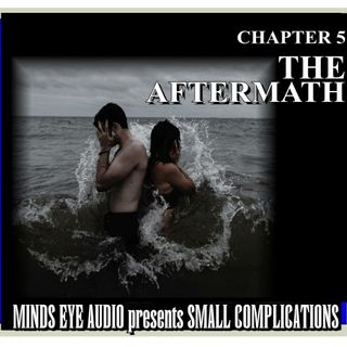 Small Complications - CH 5 - The Aftermath
