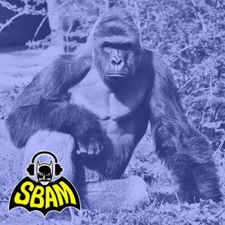 Ep. 07 | Harambe: ll gorilla che fece esplodere internet