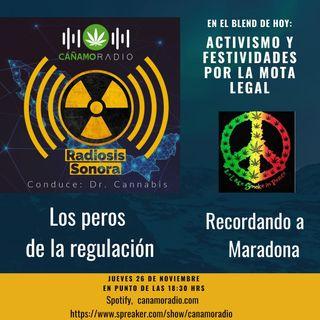 Radiosis Sonora Numero 17