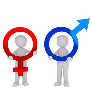 Debate sugli stereotipi di genere: cosa pensano gli alunni di 3B Scienze Umane