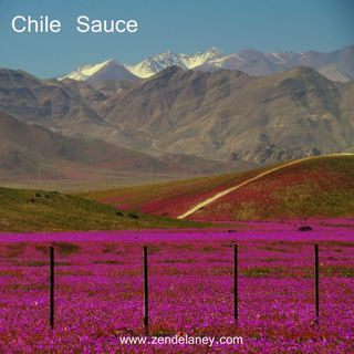 Chile Sauce with Zen Delaney on Lingo Radio Monday 31 August 2020