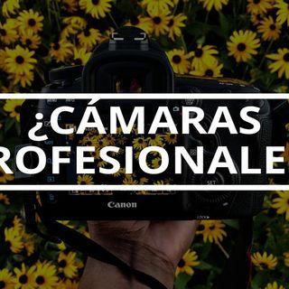 96. El engaño de las cámaras profesionales de fotografía