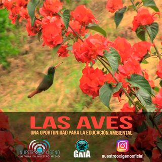 NUESTRO OXÍGENO Las aves una oportunidad para la educacion ambiental - Ing. Natalia Ruiz