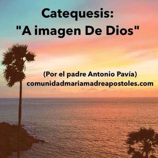 """Catequesis: """"A Imagen De Dios"""""""