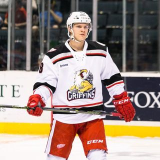 Vili Saarijarvi - Grand Rapids Griffins Defenseman