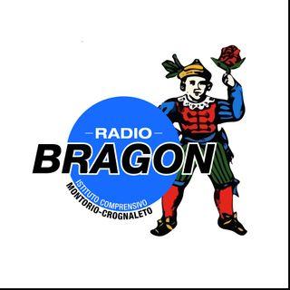 Radio Bragon