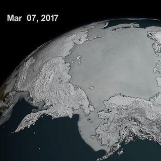 346-Arctic Ice