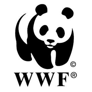 #20 - Presidente WWF Verona