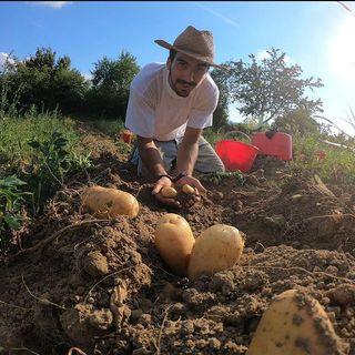 La Musica Nel Settore Agricolo - Intervista Tesi